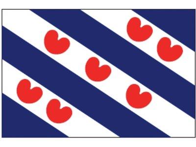 Flag province Friesland 20x30cm / 30x45cm.